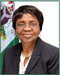 Image result for AFDAC DG, Prof. Mojisola Adeyeye